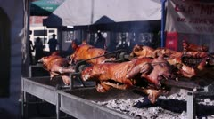 Barbecue fest (pigs on a spit) _5 - stock footage