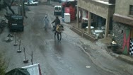 Stock Video Footage of middle eastern donkey street