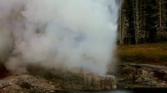Riverside Geyser Stock Footage