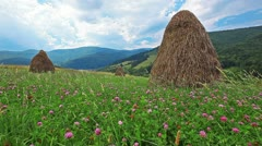 summer landscape with hut. timelapse - stock footage