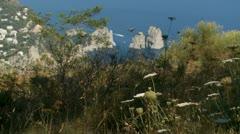 Island of Capri, Italy (13) Stock Footage