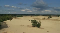 Drift sand area in the Netherlands - overview pan 01i kootwijk Stock Footage