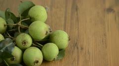 Falling down European Wild Pear Stock Footage
