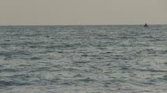 Beautiful dolphin Stock Footage