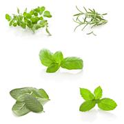 Stock Photo of herbs collage on white background