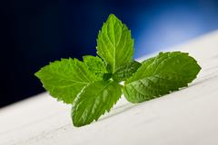 mint leaves on wooden table with spot light - stock photo