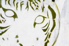 tiger head grafitti close-up, segment street art - stock illustration