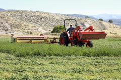 Farmer on tractor cutting hay 0850.jpg Stock Photos