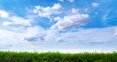 Green grass with cloudscape background - stock photo