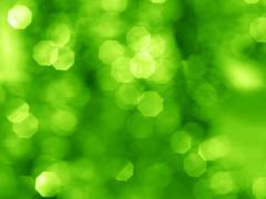 Bokeh light background - stock photo