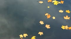 Autumnal river - stock footage