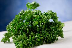 Curley parsley Stock Photos
