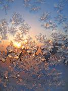 Frost and sun - stock photo
