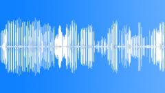 Stock Sound Effects of male mockingbird 2