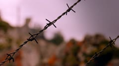 Barbwire at prison camp Stock Footage