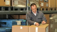 warehouse manager / warehouse worker - stock footage