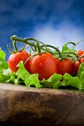 Tomatoes on lettuce Stock Photos