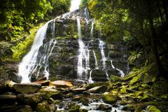 nelson falls, tasmania - stock photo