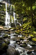 nelson falls, tasmania - stock photo