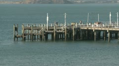 Beach and Pier Stock Footage