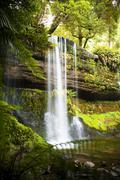 russel falls, tasmania - stock photo
