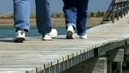 Boardwalk over marsh 8 Stock Footage