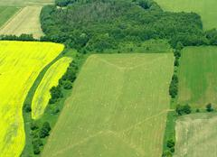 green acres - stock photo