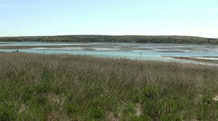 Salt marsh from cliff Stock Footage