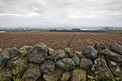 Dry stone wall in korean countryside Stock Photos