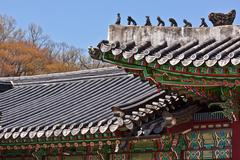 Roofs at a korean temple Stock Photos