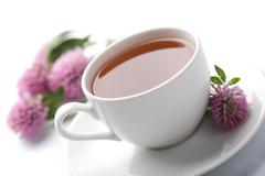 White cup of herbal tea and clover flowers isolated Stock Photos