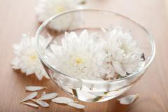 White flowers floating in bowl. spa background Stock Photos