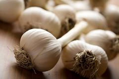 Fresh garlic background Stock Photos