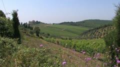 Tuscany, Italy Stock Footage
