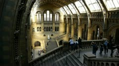 Natural History Museum London Stock Footage