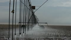 Stock Video Footage of Irrigation in Corn Field 2