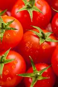 Tomato background Stock Photos