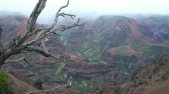 Waimea Kauai, Grand Canyon of the Pacific Stock Footage