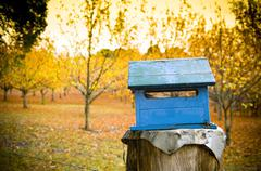 Stock Photo of country letterbox