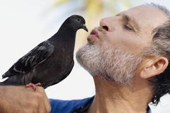 Man kissing bird Stock Photos
