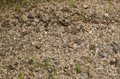 empty riverbed - stock photo
