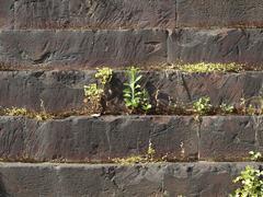 Stock Photo of roman wall