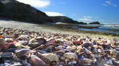 Shells on Beach HDR GFHD - stock footage