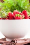 Strawberries with green plant background Stock Photos