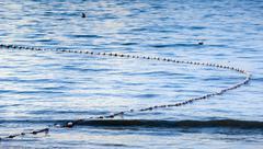 shark nets - stock photo