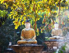buddhas statue - stock photo