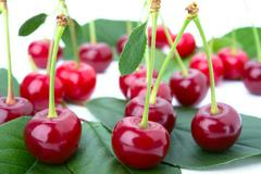 small group cherry on a petal - stock photo