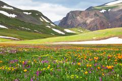 Stock Photo of mountains meadow