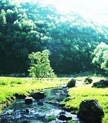 Creek in mountains Stock Photos