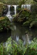 Rainforest Waterfall Landscape Stock Photos